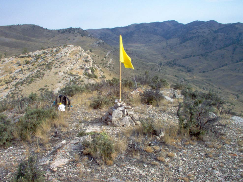 Yellow flag on a hill