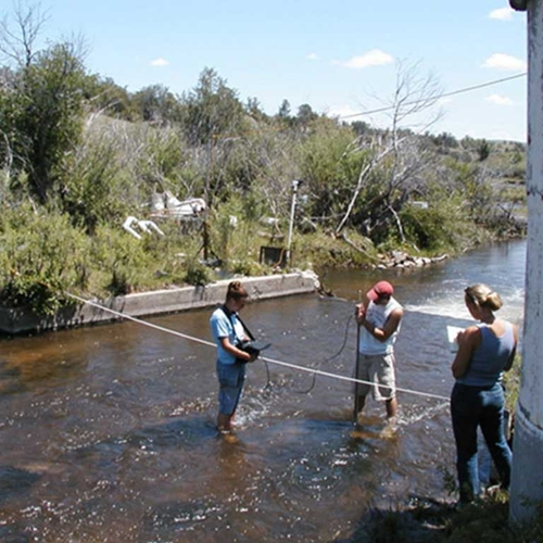 students wading in flowing creek working with instrumentation